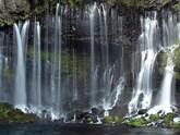 軽井沢の自然を満喫した1泊2日のデートプロポーズプラン