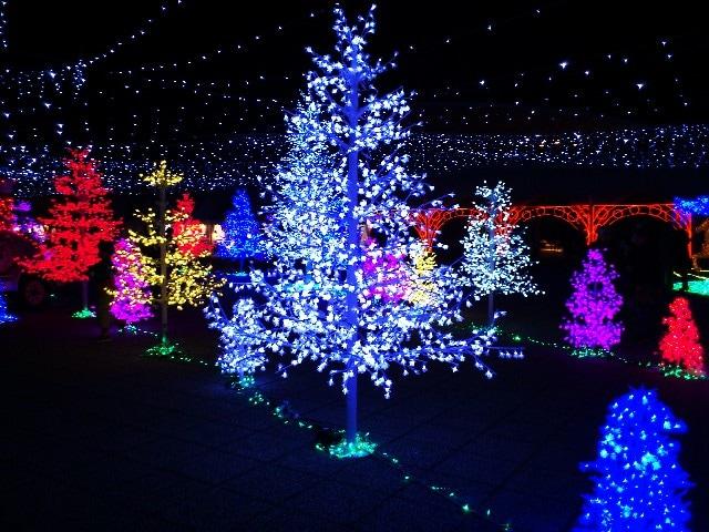 クリスマスの力を借りて思いっきりロマンチックに!のイメージ