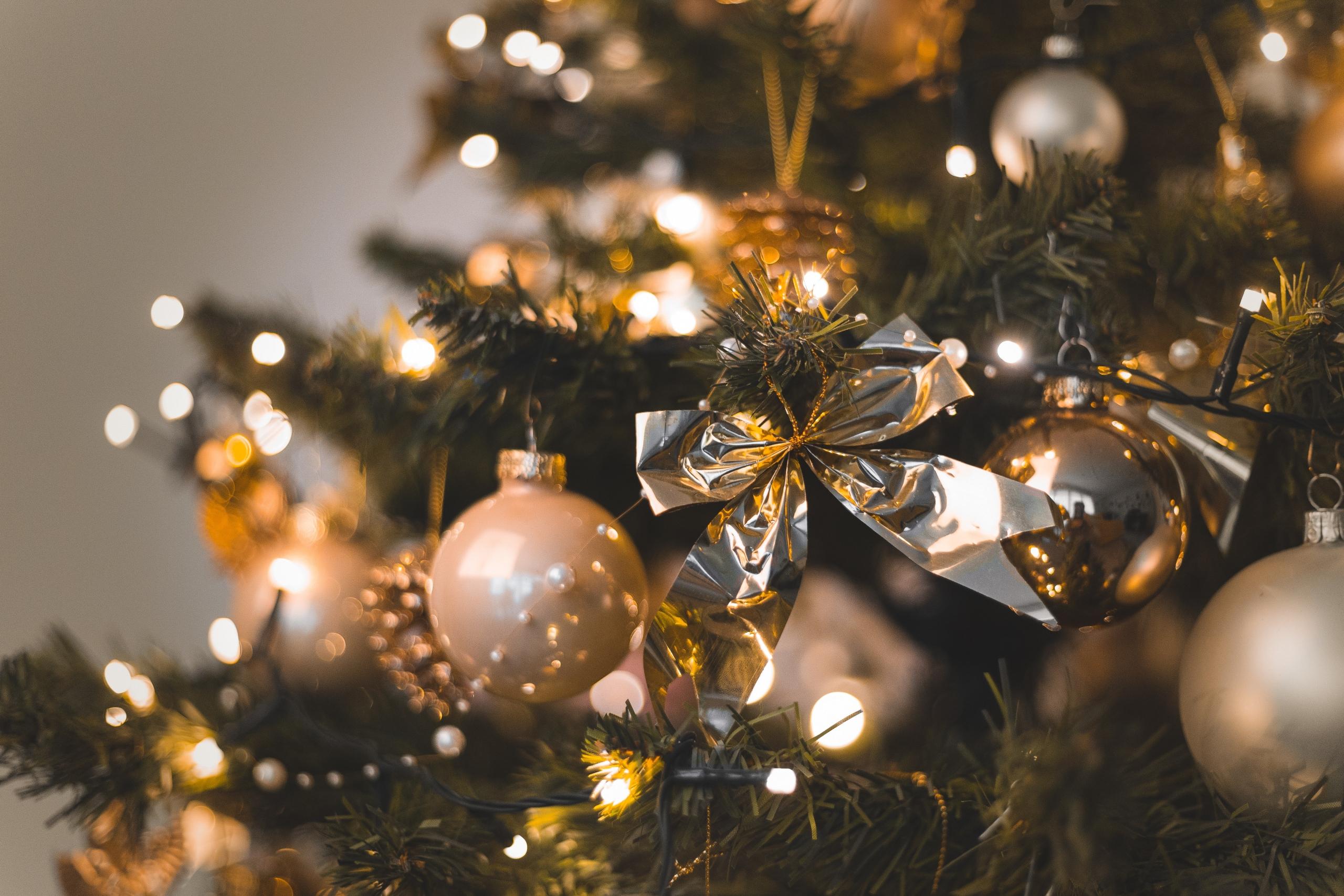 クリスマスにしたい、されたいプロポーズは?のイメージ