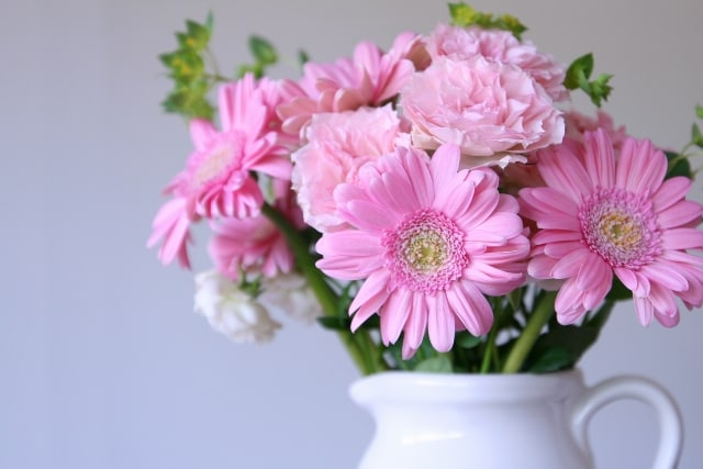 チューリップのほかにもこんな花がおすすめ!のイメージ