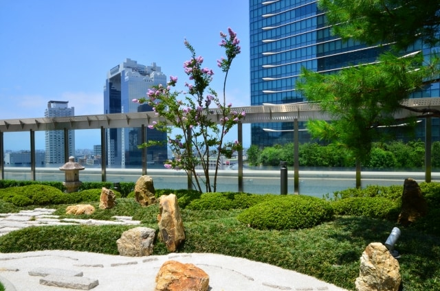 梅田スカイビルの空中庭園でプロポーズのイメージ