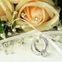 婚約指輪と一緒に贈りたい! プロポーズにオススメの花5選のイメージ